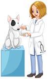 Veterinário que envolve o pé do cão ilustração royalty free