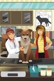 Veterinário que examina um cão bonito Imagens de Stock