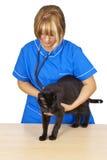 veterinär- Royaltyfri Fotografi