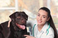 Veterinär doc med hunden i klinik royaltyfria bilder