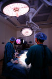 Veterinär- doktor i operationrum Arkivbild