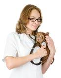 Veterinär- doktor som gör en undersökning av en sharpeivalphund. Royaltyfri Fotografi