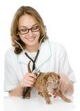 Veterinär- doktor som gör en undersökning av en sharpeivalphund. iso Fotografering för Bildbyråer