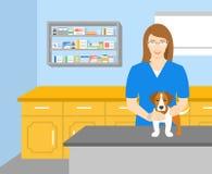 Veterinär- innehav för kvinna en hund i veterinär- kontor royaltyfri illustrationer