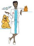 veterinär- jobbserie Arkivfoto