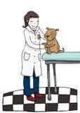 veterinär- kvinna Fotografering för Bildbyråer