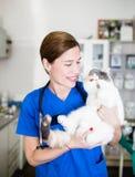 Veterinär- kvinna med katten arkivbild
