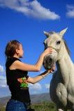 Veterinär- kvinna som kontrollerar hästhälsa Royaltyfria Bilder