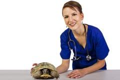 Veterinär med en reptil fotografering för bildbyråer