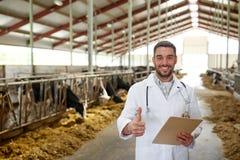 Veterinär med kor som visar tummar upp på lantgård Fotografering för Bildbyråer