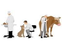 Veterinärer med husdjuruppsättningen Arkivfoto