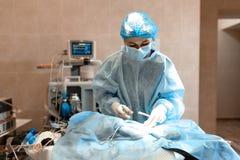Veterin?r eller doktorer som g?r kirurgi i kliniken medicin, husdjur, djur, h?lsov?rd och folkbegrepp fotografering för bildbyråer