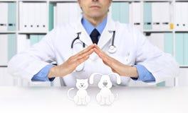Veterinaire artsenhanden met dierlijke pictogrammen Dierenartskliniek stock foto's