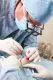 Veterinaire doende kniechirurgie op kleine hond stock fotografie
