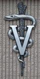 Veterinaire Geneeskunde Royalty-vrije Stock Foto's