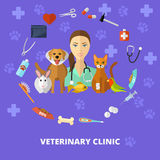 Veterinaire geplaatste pictogrammen Stock Foto's