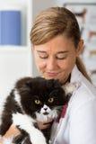 Veterinaire kliniek met een katje Stock Foto's
