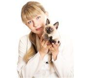 veterinarian котенка удерживания Стоковая Фотография