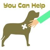 veterinarian плаката Стоковые Изображения