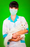 Veterinarian Stock Photos