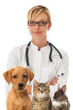 Veterinarian with animals Royalty Free Stock Photo