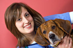 Veterinarian with a Beagle Stock Photography