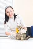 Veterinarian brushing kitten Royalty Free Stock Images