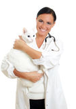 Veterinarian with a cat Royalty Free Stock Photos
