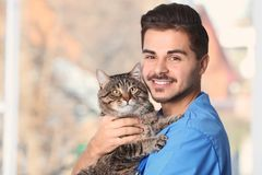 Veterinarian doc with cat in animal clinic. Space for text stock photo