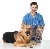 Veterinarian doc with dog and cat. On white background stock photos