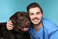 Veterinarian doc with dog. On color background stock photos