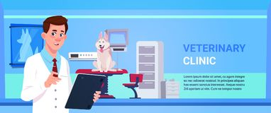Veterinarian Doctor Examining Dog In Clinic Office Veterinary Medicine And Animal Care Concept. Flat Vector Illustration Stock Image