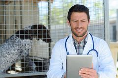 Veterinarian doctor holding tablet pc by dog kennel. Vet stock images