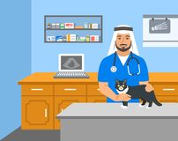 Veterinarian doctor holds cat on examination table royalty free illustration