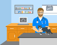 Veterinarian doctor holds cat on examination table Royalty Free Stock Image