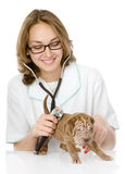 Veterinarian doctor making a checkup of a sharpei puppy dog. iso Stock Image