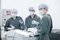 Veterinarian doctor in operation room for laparoscopic surgical Royalty Free Stock Photo