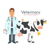 Veterinarian Doctor With Cow Stock Image
