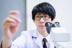 Veterinarian doctor working Royalty Free Stock Photo