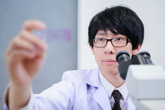 Veterinarian doctor working Royalty Free Stock Photography