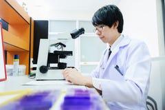 Veterinarian doctor working Stock Images