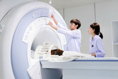 Veterinarian doctor working in MRI room Royalty Free Stock Image