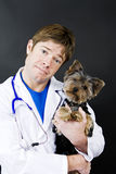 Veterinarian and dog. Male veterinarian holding a little puppy Stock Photo