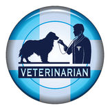 Veterinarian With Dog Button Stock Photo