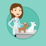 Veterinarian examining dogs vector illustration. Stock Photos
