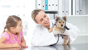 Veterinarian examining puppy with girl Royalty Free Stock Image