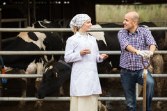 Veterinarian and farmer in cowshed Royalty Free Stock Photos