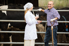 Veterinarian and farmer in cowshed. Smiling young women veterinarian with glass of milk talking to mature farmer next to cows on farm Stock Photo