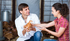 Veterinarian and female farmer in hen house. Joyful male veterinarian talking to young female farmer in hen house  . Focus on man Stock Images