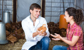 Veterinarian and female farmer in hen house. Smiling male veterinarian talking to young female farmer in hen house . Focus on man Royalty Free Stock Photos